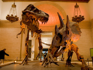 Natural History Museum, Exposition Park, Los Angeles, California, USA.